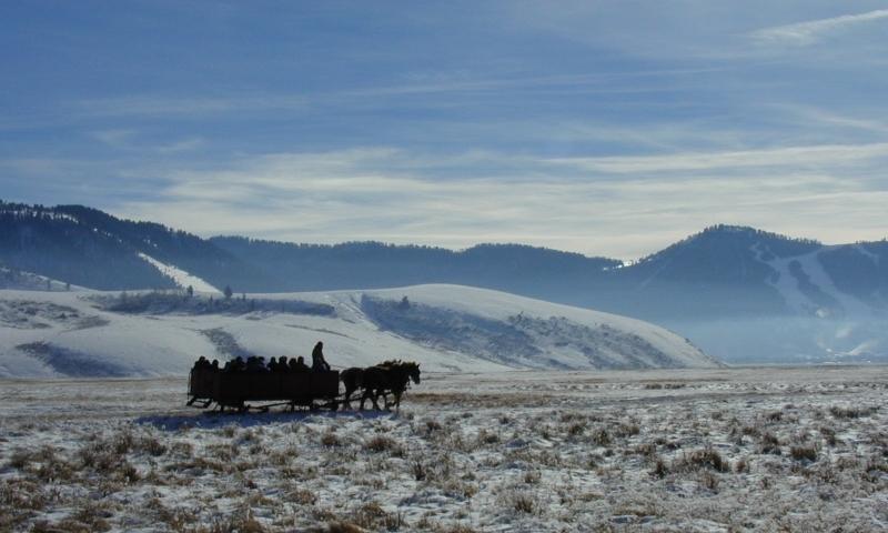 Jackson Hole Sleigh Rides Elk Refuge