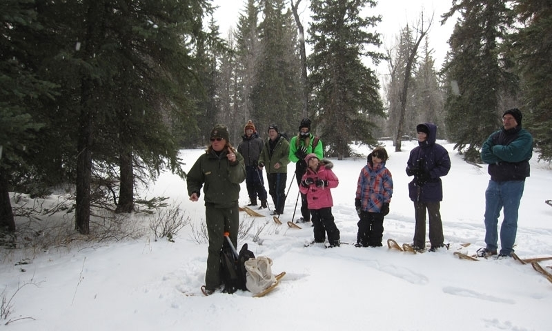 Snowshoeing Grand Teton National Park Ranger Program Wyoming Winter
