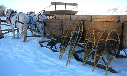 Snowshoe Tour and Sleigh Ride