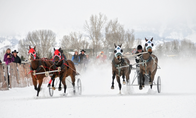 Cutter Races in Jackson Wyoming