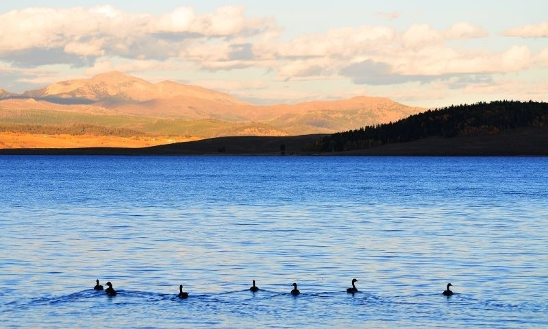 Places To Visit West Yellowstone Montana Alltrips