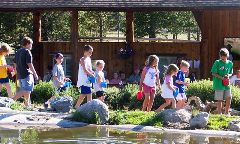 Grizzly Wolf Discovery Center West Yellowstone Montana Kids