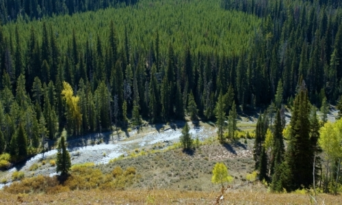 Hoback River Wyoming Fly Fishing Camping Boating Alltrips