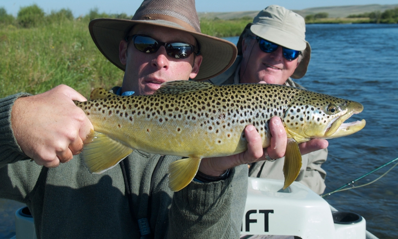 Green River Wyoming Fishing Brown Trout