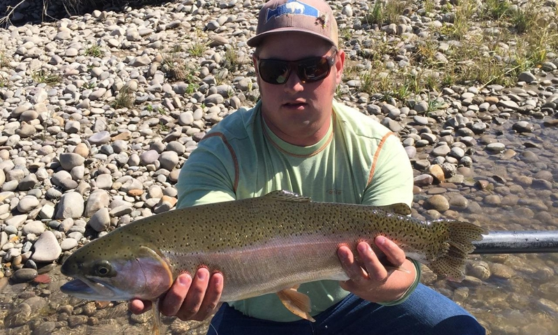 Fly Fishing the Green River near Pinedale