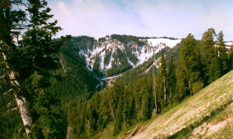 Snake River Mountains at Teton Pass