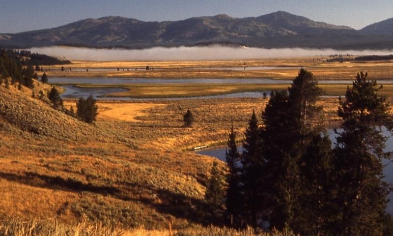 Hayden Valley Lake Village Yellowstone River