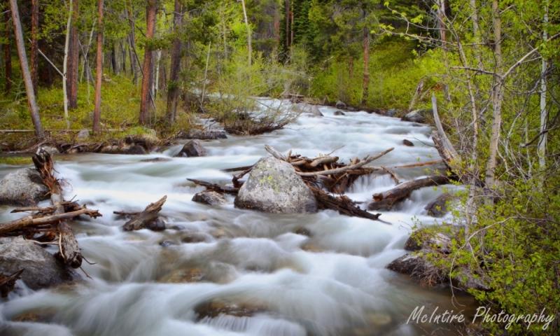 Lake Creek in Grand Teton National Park