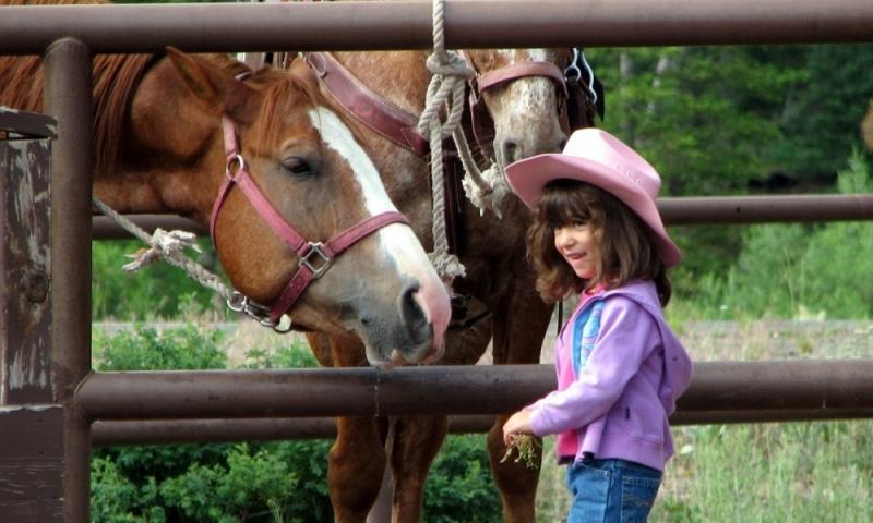Jackson Hole Kids Activities Horseback Riding