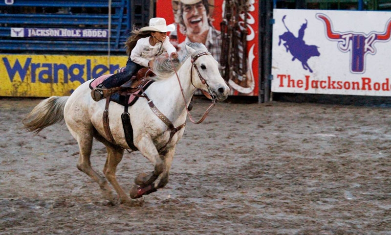Jackson Hole WY Attractions Rodeo