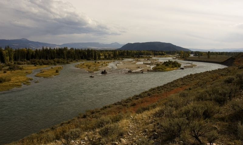 Snake River near Moose Wyoming