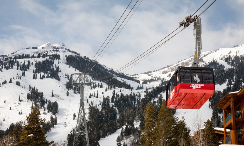 Tram at Jackson Hole Mountain Resort