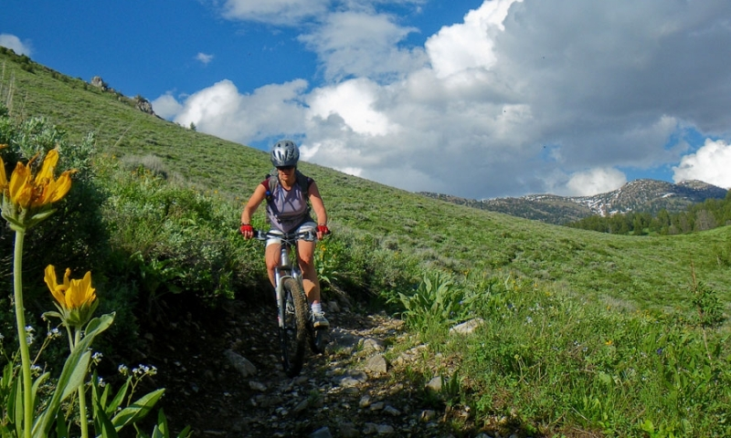 Jackson Hole Wyoming Mountain Biking