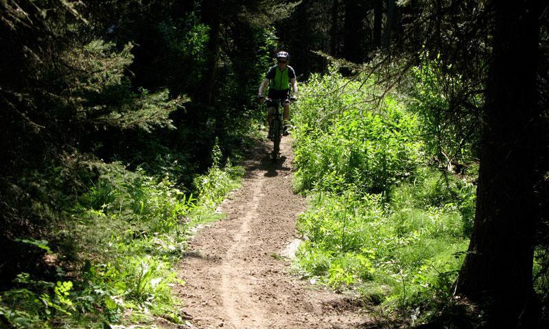 Mountain Biking the Arrow Trail in Jackson