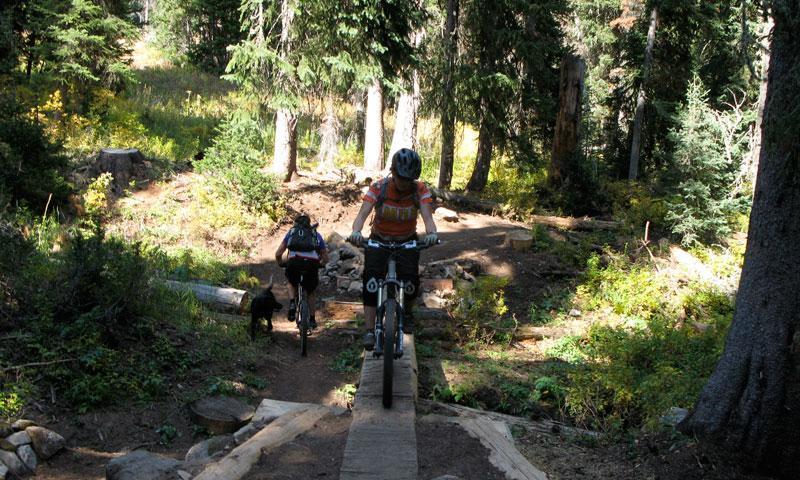Mountain Biking in Jackson Wyoming