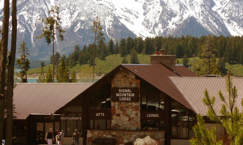 Grand Teton National Park Signal Mountain Lodge Lodging