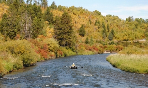 Salt river wyoming fly fishing camping boating alltrips for Salt river fishing