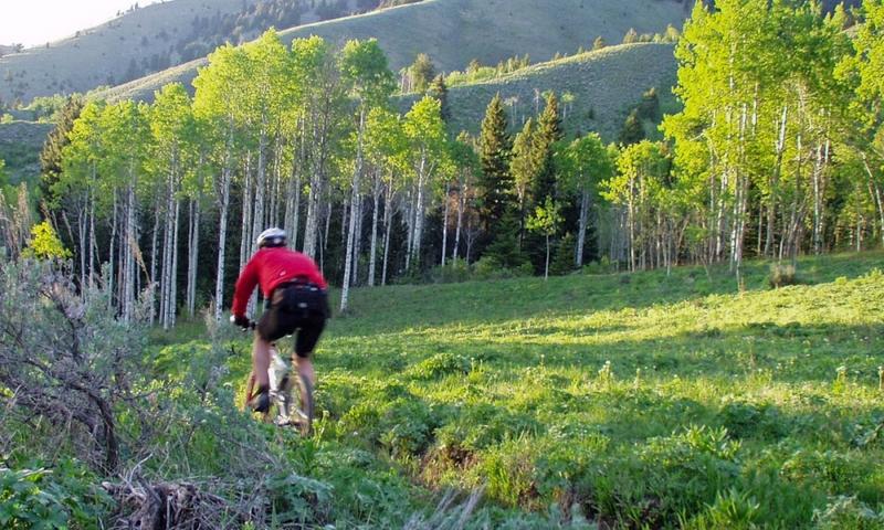 Mountain Biking Cache Creek Jackson