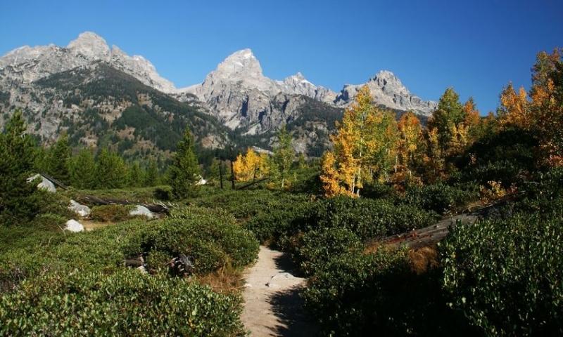 Hiking Trail in Grand Teton National Park