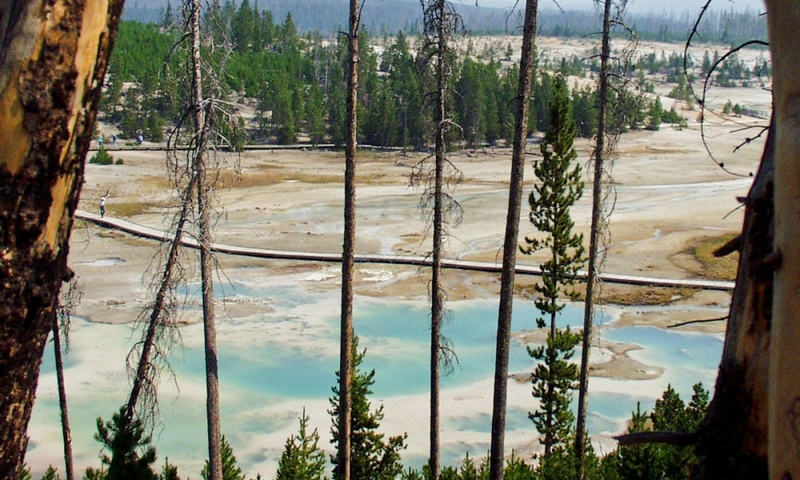 Norris Geyser Basin Yellowstone