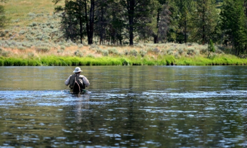 Top 5 fishing destinations around yellowstone alltrips for Yellowstone park fishing report