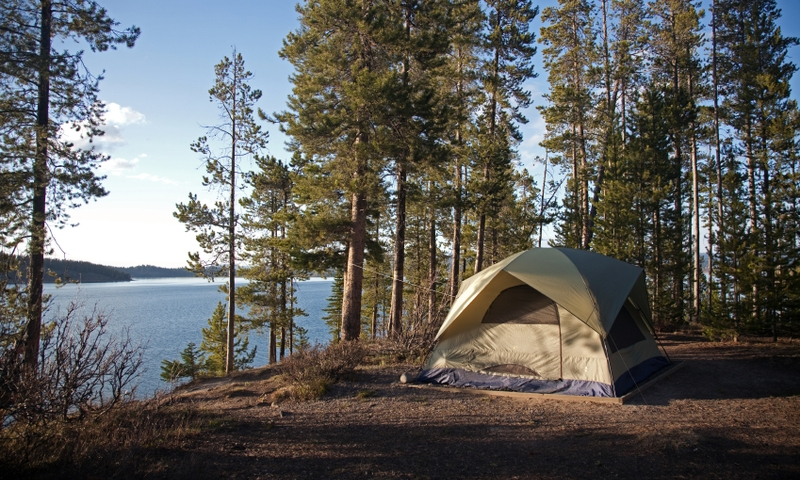 Grand Teton National Park Camping Tent Jackson Lake