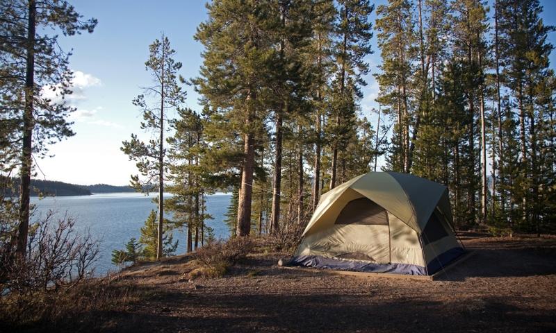 Jackson Hole Activities Camping