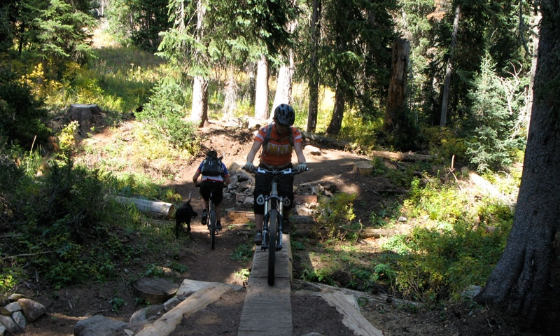 Mountain Biking in Jackson Wyoming