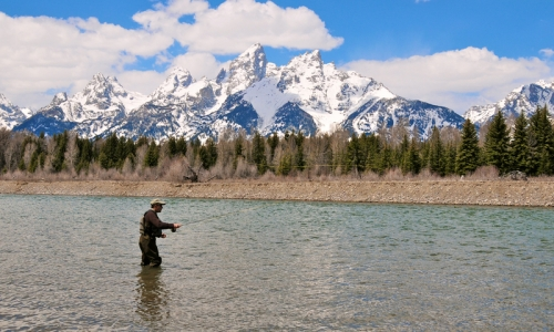 Jackson Hole Activities Fishing