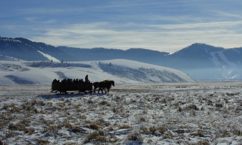 National Elk Refuge Jackson Wyoming