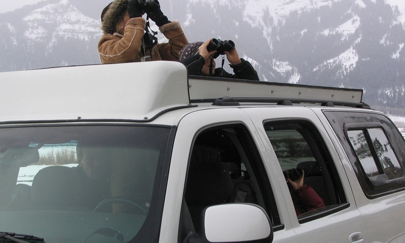 Sightseeing Binoculars Yellowstone National Park Tour