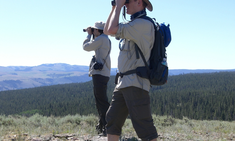 Sightseeing Binoculars Yellowstone National Park Tour