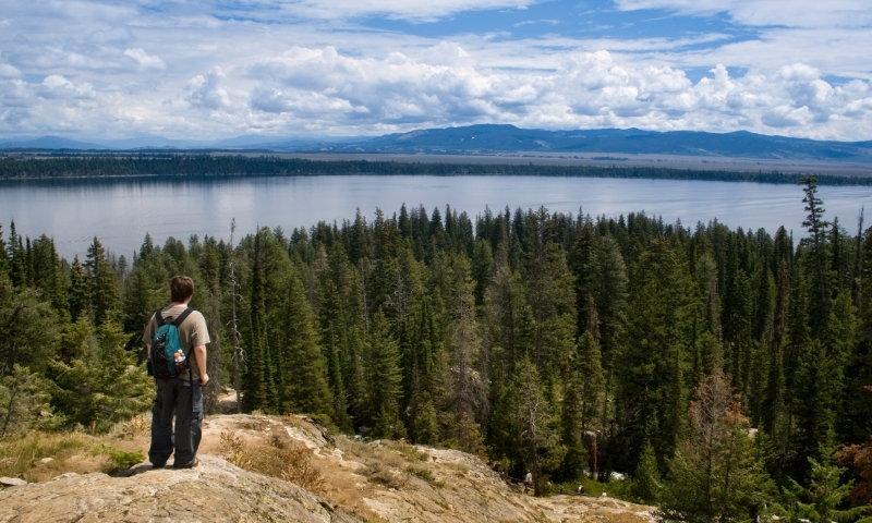 Jackson Hole Hiking Jenny Lake Trail
