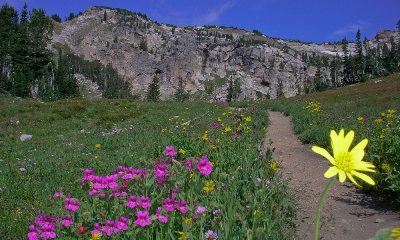 Teton Crest Trail Grand Teton National Park Wyoming