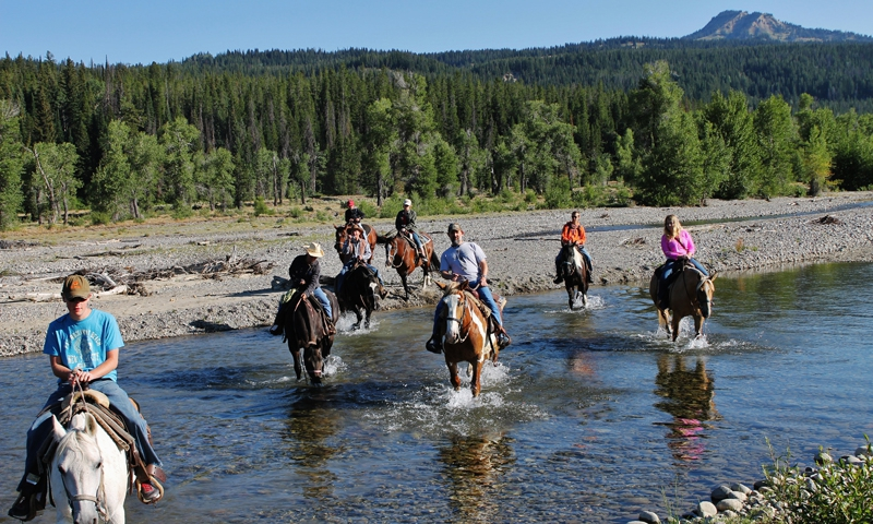 Jackson Hole Wyoming Horseback Riding