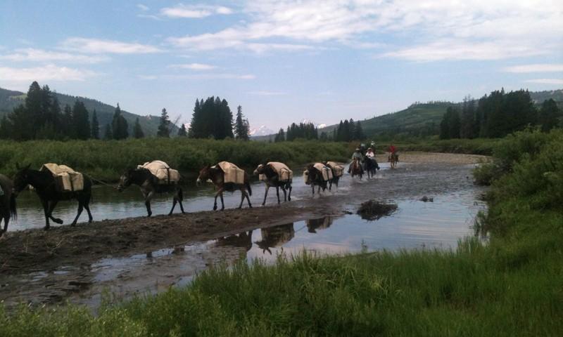 horse pack trip grand teton