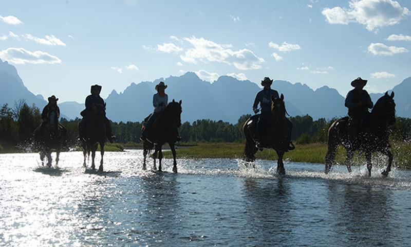 Jackson Hole Horseback Ride
