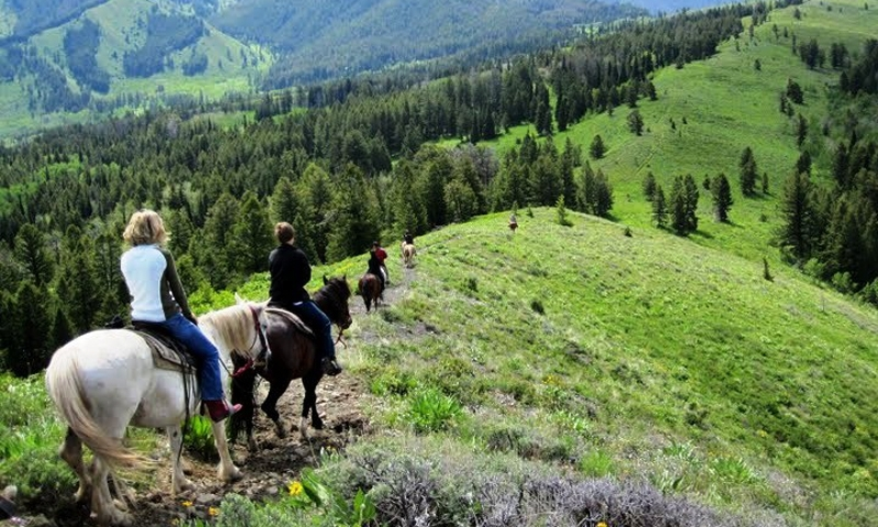 Horseback Riding Pack Trip Wyoming