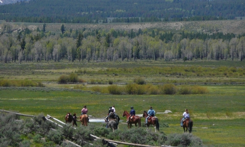 Jackson Hole Wyoming Horse Pack Trip