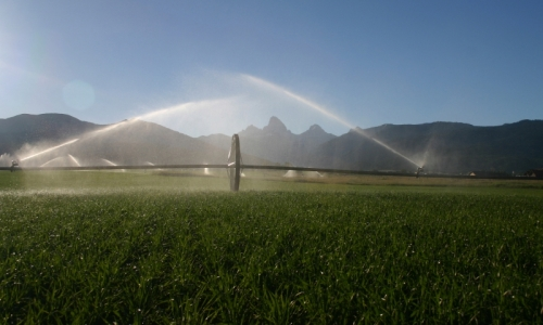 Teton Valley Idaho Farming